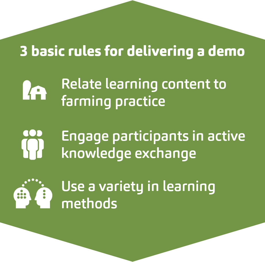 rules for demo delivery